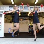 Galeria: Dziewczyny LCR Honda w sezonie 2014